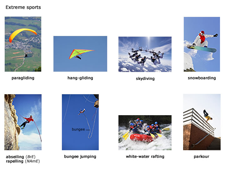 comparison between extreme sports and traditional sports